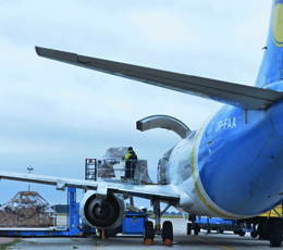 Boryspil Airport will temporarily suspend the acceptance of imported cargo