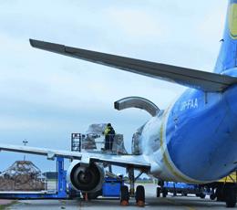 Аэропорт «Борисполь» временно приостановит приём импортных грузов